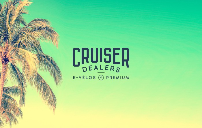vignette-realisation-cruiser-dealers